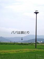 P6100021_2